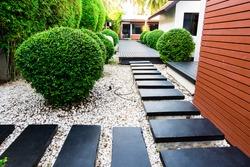 Black rocks walking way in tropical garden, Black stones garden path on white pebbles and lush green trees.