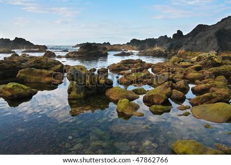 Black Rocky volcanic coastline, Pico island, Azores,  Atlantic ocean