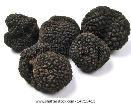 black romanian truffle - Tuber uncinatum