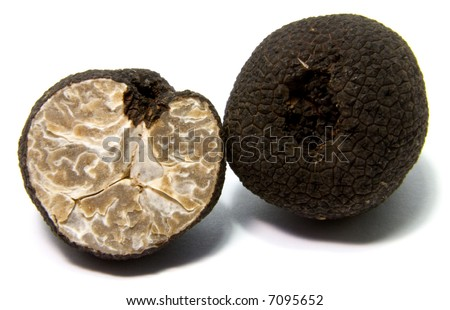 black romanian truffle - Tuber uncinatum - stock photo