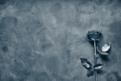 Black rose lies on a dark stone slab