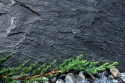 Black rough surface stone wall background with leafs