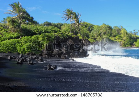 Black sand beach with crashing surf and palm trees