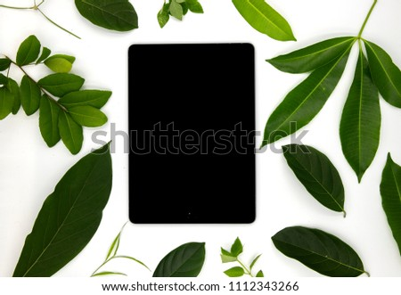 Black screen pad and green summer leaves on white background. User interface of ipad app mockup with green foliage. Gadget pad flat lay photo. Summer decor on white table top view with personal gadget