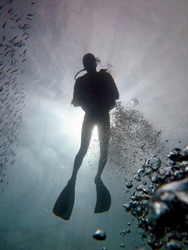 black silhouette of a diver, bubbles, fish, and gray water