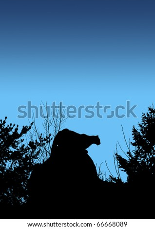 Black silhouette of cougar stalking prey from a big boulder rock on top of a mountain in the early morning or night.