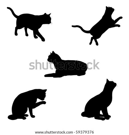 black silhouettes of a cat in various poses on a white