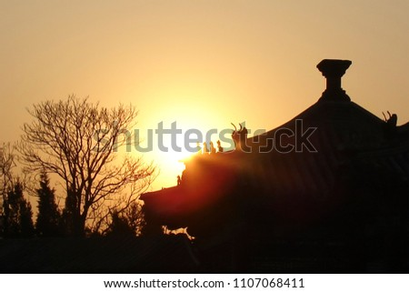 black silhouettes of a curved multitiered roof and bare trees in a winter park against a background of bright sky at sunset; Chinese Imperial roof decorated with ceramic figurines of cats and dragons #1107068411