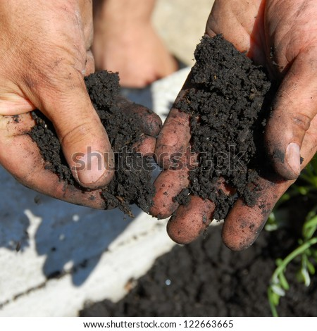black soil for planting flowers in man hands closeup