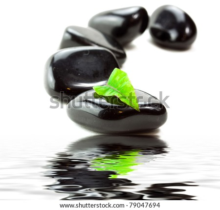 Black SPA stones with green leaf and reflection in water