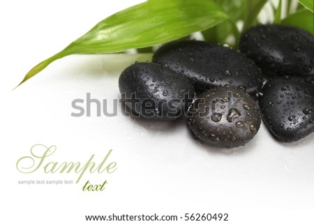 black stones and green leaf