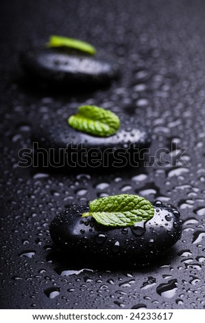 black stones whit leaf of mint and drops