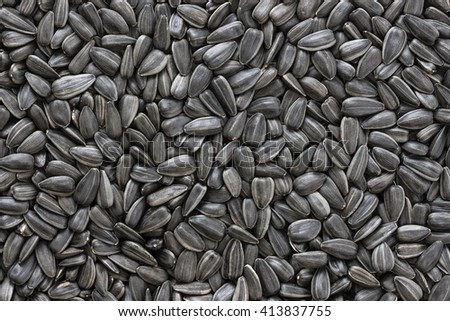 Black sunflower seeds. For texture or background #413837755