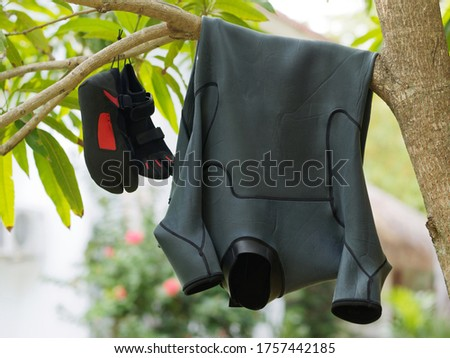 Black Surf suit and reef shoes drying on a tree branch.