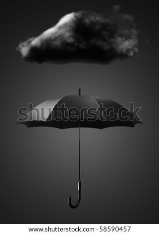 Amazon.com: The Umbrella (9780399242151): Jan Brett: Books