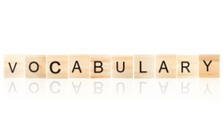 Black Vocabulary word with reflection on wooden blocks on white Isolated. background.
