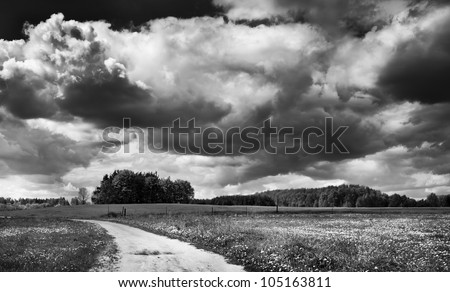 Black-white landscape. Cloudy sky, field and rural road. Landscape of village.