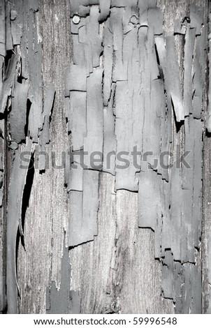 Black & White peeling paint on wood #59996548