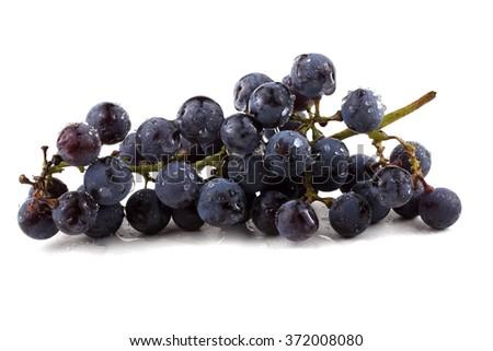 Black wine grape #372008080