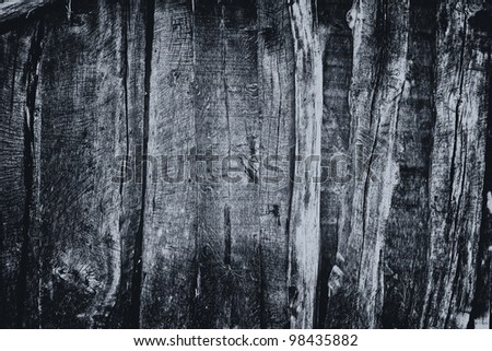 black wood texture - stock photo