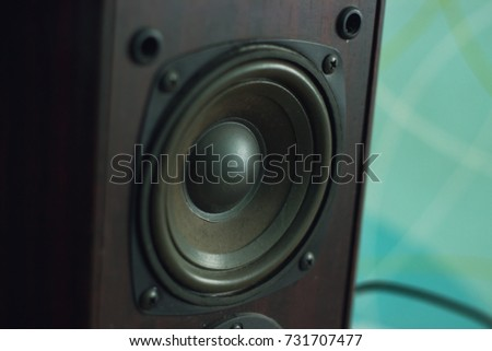 Black Woofer at interior of the room #731707477
