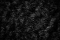 Black wool texture background, dark natural sheep wool, black seamless cotton, texture of gray fluffy fur, close-up fragment of black wool carpet