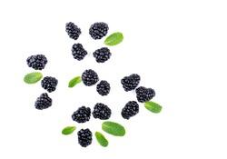 Blackberries and leaves top view