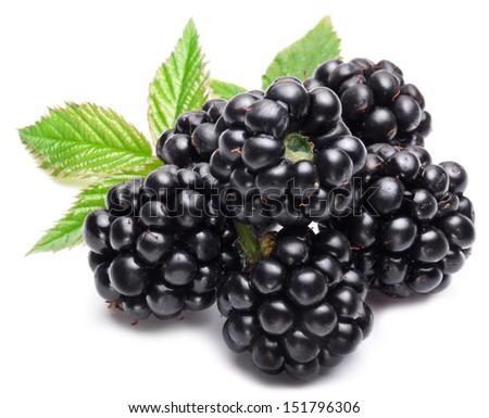 Blackberries isolated on white background.