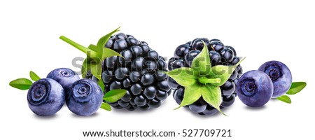 blackberry,  bilberry, blueberries  isolated on white background
