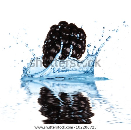Blackberry falling into water, isolated on white background