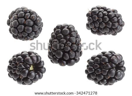 Blackberry fruit set closeup isolated on white
