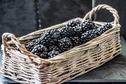 blackberry in a wicker basket on a black background. Blackberry close up.