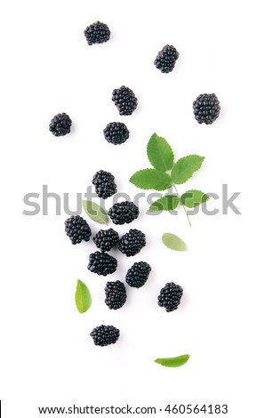 BlackBerry isolated on white. Top view.
