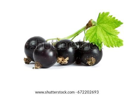 Blackcurrant on white background Photo stock ©
