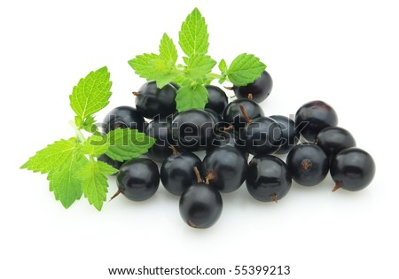 Blackcurrant with melissa