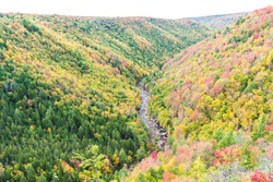 Blackwater river with Allegheny mountains in autumn