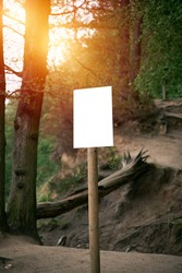 Blank advertisement sign in the woods. Signboard with nature background