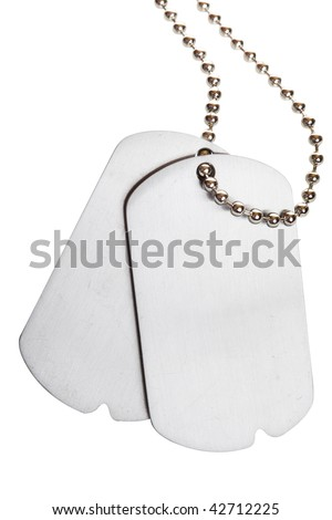 blank army dogtags isolated on white background - insert your own text - stock photo