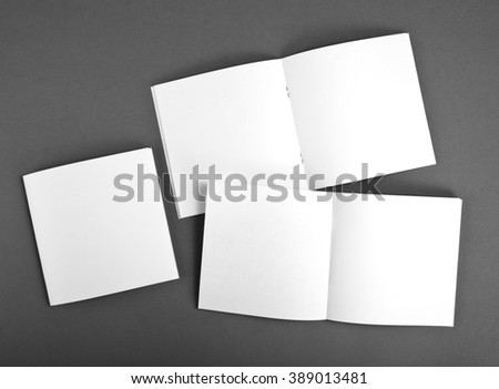 Blank brochure on gray background #389013481