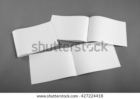 Blank brochures on gray background #427224418