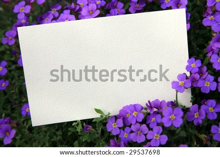 Blank card in flower bed.