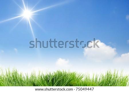 Blank clear blue sky and sun