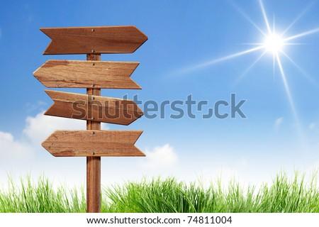 blank direction sign on the sun sky