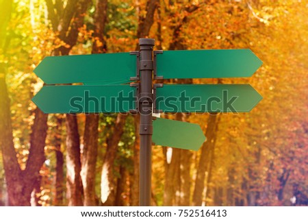Blank directional road signs against autumn foliage. Green metal arrows on the signpost. Warm toned colors. Old style image #752516413