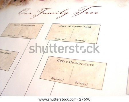 free blank family tree template. Blank+family+tree+pictures