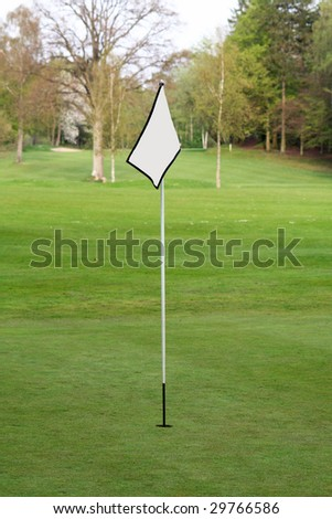 blank flag on a green on a golf course