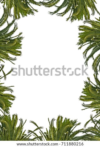 Blank frame background with decorated plants borders.
