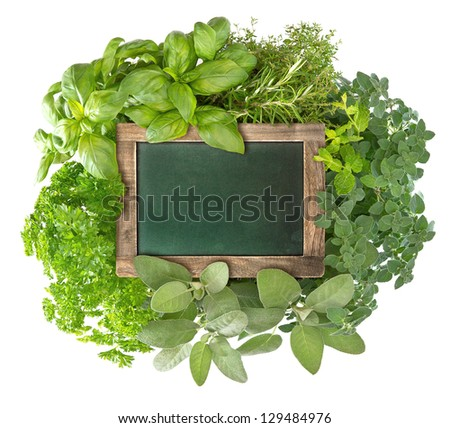 blank green blackboard with variety fresh herbs over white background. empty chalkboard for your text