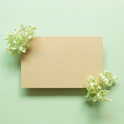 Blank kraft memo pad with dry hydrangea flowers on green background. top view, copy space