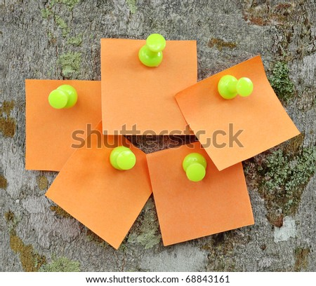 Blank memo notes pinned on cork notice board - stock photo
